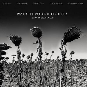 DSS Cover WALK THROUGH LIGHTY